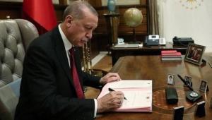Belediye Başkanı seçilemediler, Beştepe'ye atandılar