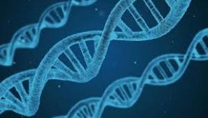 Yeni bir gen mutasyonunu taşıyan kadın neredeyse ağrısız yaşıyor.