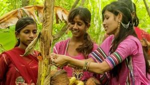 Bu Köyde Yeni Doğan Her Kız Çocuğu İçin 111 Ağaç Dikiliyor