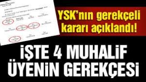 YSK üyesi Aykın'ın 17 sayfalık muhalefet şerhi iptal gerekçelerini çürüttü