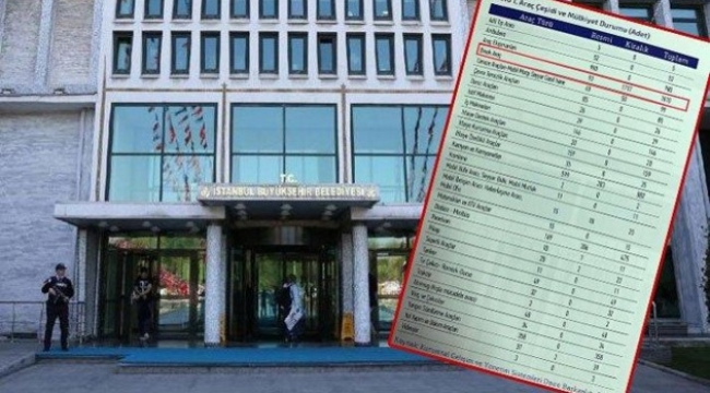 İBB'nin 138.7 milyonluk kiralık araçları çok tartışılacak
