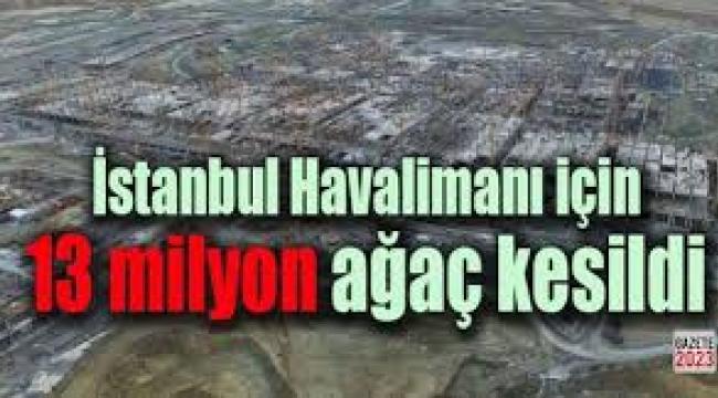 Üçüncü Havalimanı için kaç milyon ağaç kesildi?...