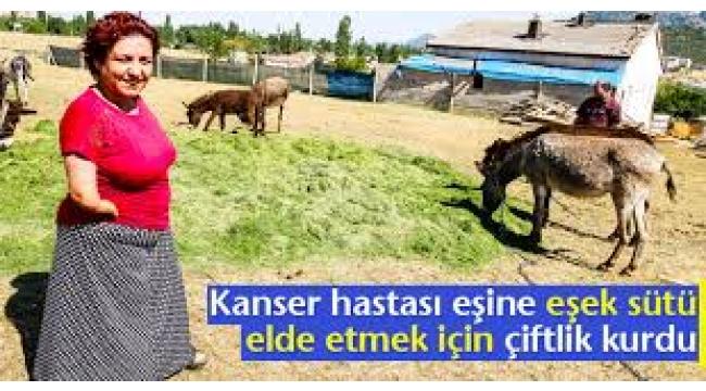 Kanser hastası eşine içirdiği eşek sütü için çiftlik kurdu...