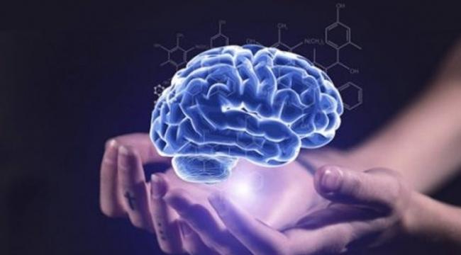 'Kuantum Darwinciliği' teorisi deneysel testleri geçiyor