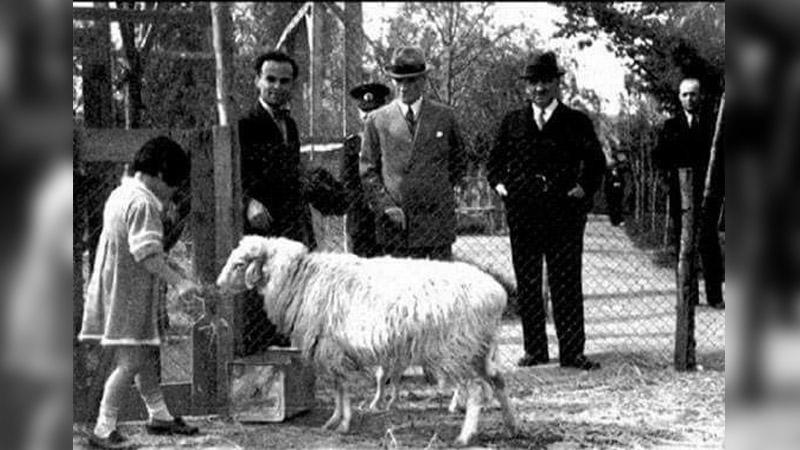 Murat Bardakçı: Atatürk, 1931'de