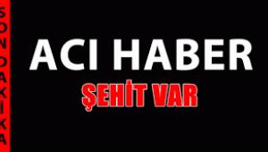 Şırnak'tan acı haber! 3 asker şehit, 1 asker yaralı