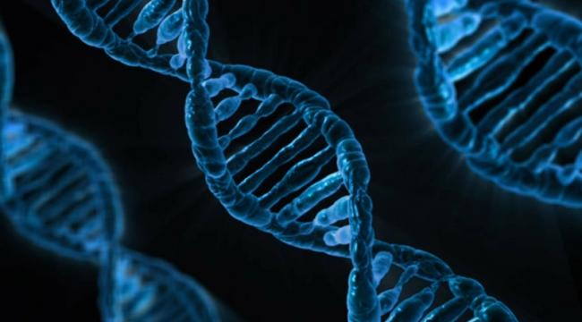 Gen değiştirme teknolojisi ile ilk kez bir AIDS hastasının lösemisi tedavi edildi
