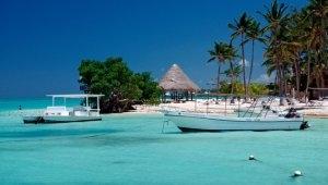 Survivor'ın ünlü adasında 12. ölüm! Sebebi açıklanamıyor