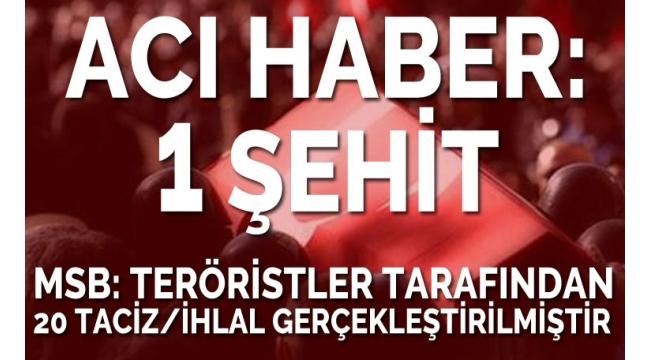 Barış Pınarı Harekatı'ndan acı haber: 1 şehit