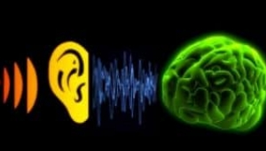 Beyin orgazmı: YouTube'da ASMR trendi nedir?