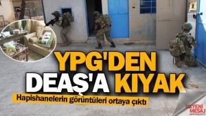 Skandal görüntüler... YPG'den DEAŞ'a kıyak