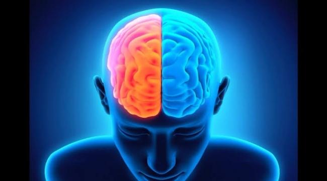 Beyinleri birbirleriyle bağlanan insanlar düşüncelerini paylaşmayı başardı