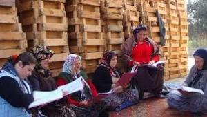 Köyde tiyatro yapan kadınların öyküsü