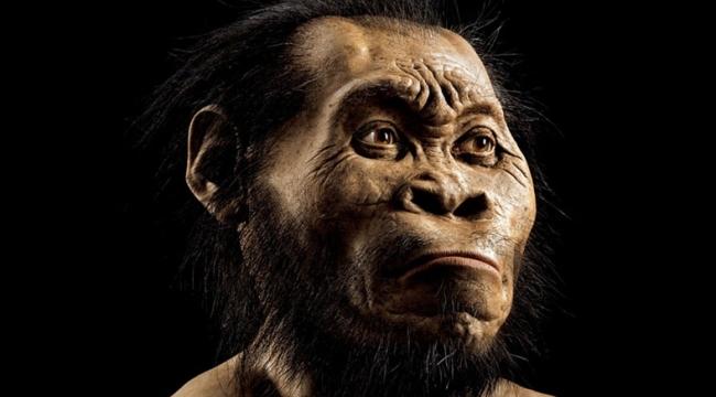 Nesli tükenmiş yeni insan türü keşfedildi