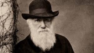 Evrimin peygamberi: Herbert Spencer