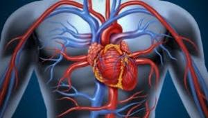 Tıkalı damarlar için yapılan kalp ameliyatları gereksiz olabilir