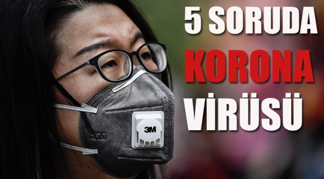5 soruda korona virüsü
