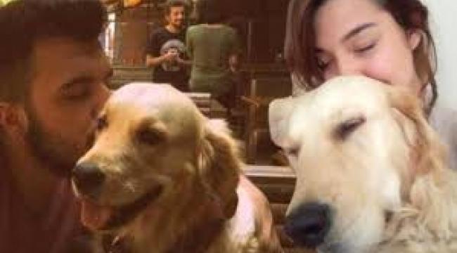 Ayrılan sevgililerin köpekleri kimde kalır