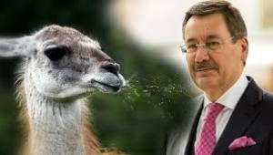 Melih Gökçek'in hayvan çiftliğinde kanguru da var sakallı ejder de