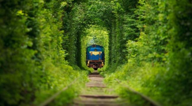 Sadece masallarda olur dedirten yer: Ukrayna Aşk Tüneli (Tunnel of Love)