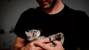 Kadınlar kediyle poz veren erkeklere daha az şans veriyor