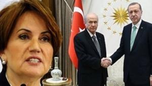 Erdoğan'ın Bahçeli'ye 'Akşener' çağrısı yaptırmasının nedeni ortaya çıktı