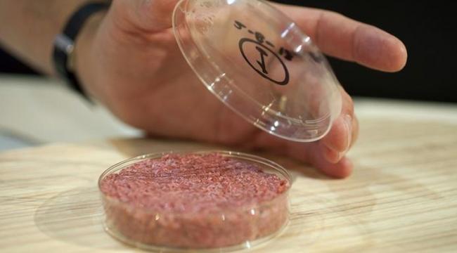 Bilim insanları 2030'da tüketilecek gıdaları tahmin etti: Laboratuvar etleri ve böcekli pizzalar