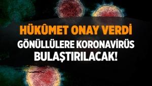koronavirüs aşı çalışmaları için gönüllülere virüs bulaştırılacak