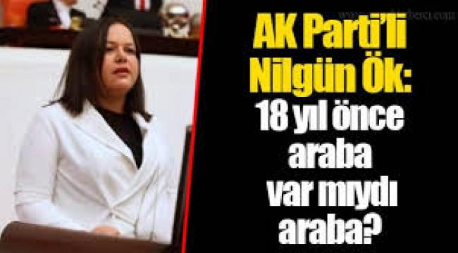 TBMM'de AKP'li Nilgün Ök: 18 yıl önce araba var mıydı?