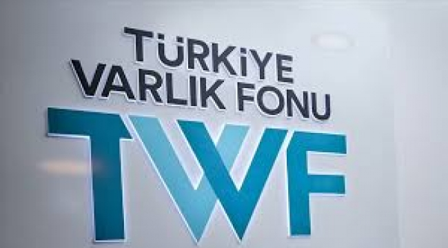 Erdoğan'dan gece yarısı Türkiye Varlık Fonu operasyonu