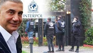 Sedat Peker için Interpol devrede... İsimler tek tek belirlendi!