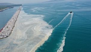 Dikkat çeken Marmara uyarısı: Denize girmek bir an önce yasaklanmalı