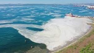 Marmara Denizi göz göre göre müsilaja boğulmuş!