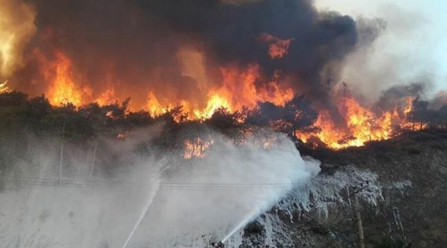 Fahrettin Altun duyurdu: 189 yangından 174'ü kontrol altına alındı