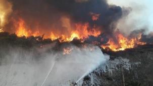 Kandilli Rasathanesi Meteoroloji Laboratuvarı Başkanı: Yangın bölgelerinde yağış gözükmüyor
