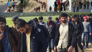 Mustafa Balbay yanıtladı: Afgan göçmenler arasında neden hiç kadın ve çocuk yok?