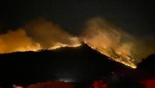 Orman yangınlarıyla mücadelede 7.gün: 5 ilde yangınlar devam ediyor