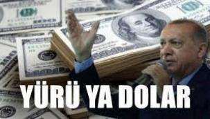Merkez Bankası yönetiminde operasyon; iki başkan yardımcısı ile bir PPK üyesi görevden alındı, dolar kurunda yeni rekor kırıldı!
