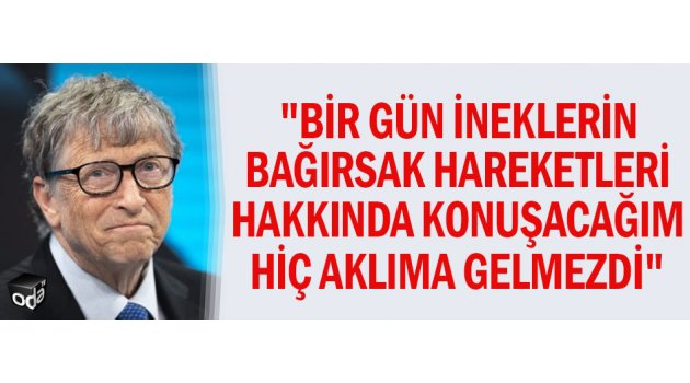 Bill Gates ve İnekler
