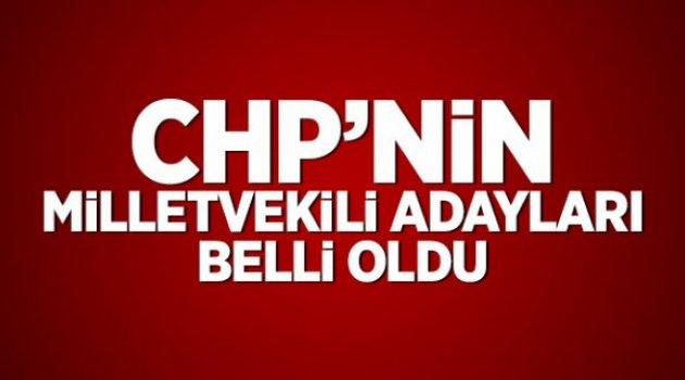 CHP'nin milletvekili adayları belli oldu