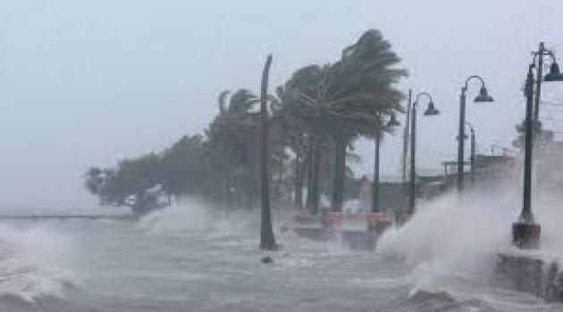 Irma Kasırgası Florida'da: Ölü sayısı artıyor