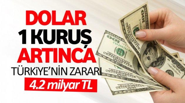 Dolar 1 kuruşluk artışın Türkiye'ye zararı!