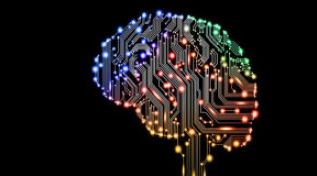 İnsan beyni ilk kez internete bağlandı!