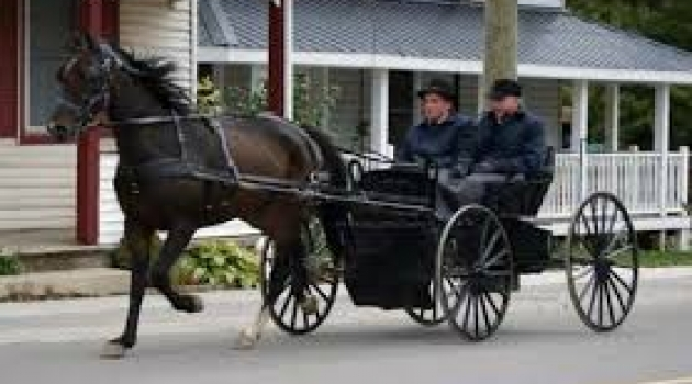 Teknolojiyi reddeden Mennonitler
