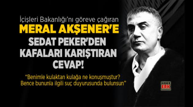 Sedat Peker'den Akşener'e şok yanıt:
