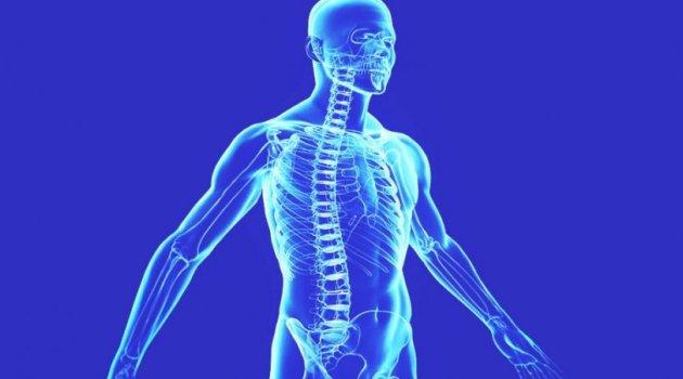Şok Açıklama: Vücudunuzun Yarısı İnsan Değil