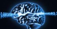 Beyinlerimiz, parmak izi tarzı eşsiz izlere sahip