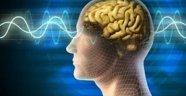 Sizi şaşırtacak beyinle ilgili 10 ilginç bilgi