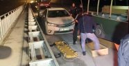 İstanbul'da bulunan cesetlerin sırrı çözüldü!