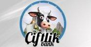 Çiftlik Bank'a devlet hibe mi verdi?